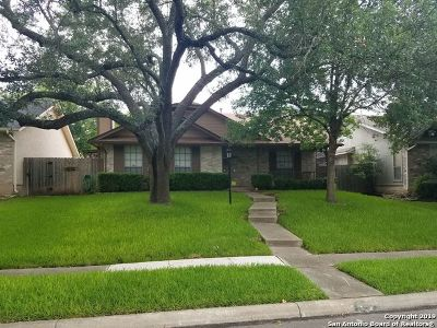 San Antonio Single Family Home New: 12115 Lemon Blossom