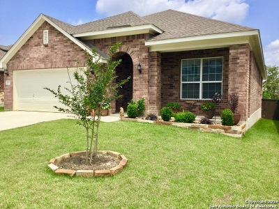 San Antonio Single Family Home New: 8171 Two Falls