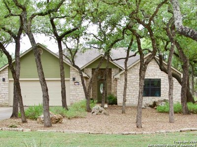 San Marcos Single Family Home New: 315 Pampas Pass