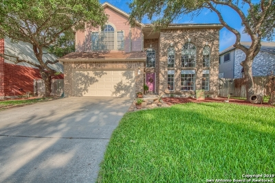 Bexar County Single Family Home New: 1227 Farnsworth Dr