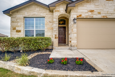 San Antonio Single Family Home New: 8462 Meadow Plains
