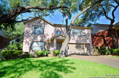 San Antonio Single Family Home New: 16411 Encanto Pass