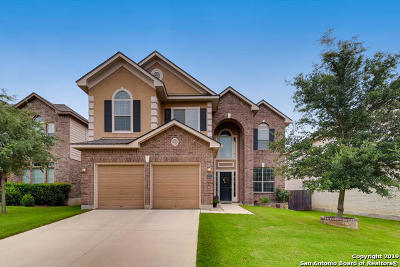 San Antonio Single Family Home New: 12123 Sonni Field