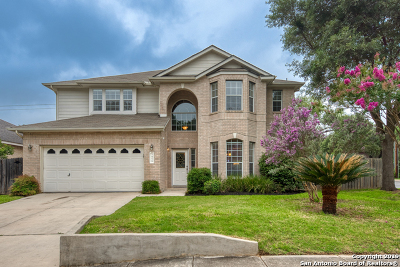 San Antonio Single Family Home New: 3459 Pinto Pony Ln