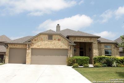 New Braunfels TX Single Family Home New: $385,000