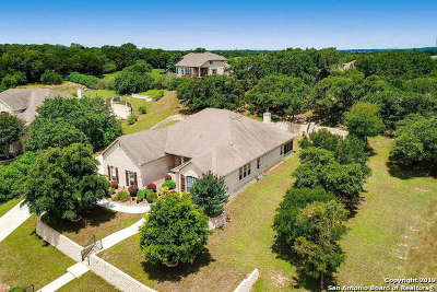 New Braunfels Single Family Home New: 849 Santa Cruz