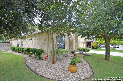 New Braunfels Single Family Home New: 2146 Alton Loop