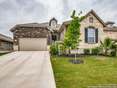 San Antonio Single Family Home New: 1107 Red Rock Ranch