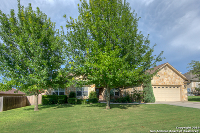 New Braunfels Single Family Home New: 1159 Cherry Hill