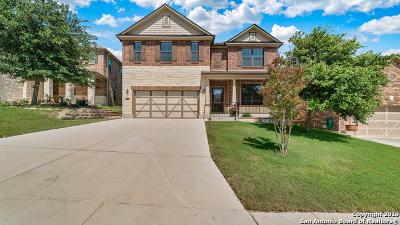 San Antonio Single Family Home New: 21226 Cinch Run