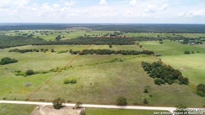 Wilson County Farm & Ranch For Sale: Tract 2 Cr 429