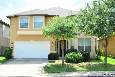 San Antonio Single Family Home New: 10435 Avalon Ridge