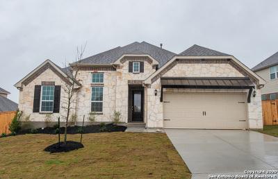 San Antonio Single Family Home New: 3022 Bright Skies