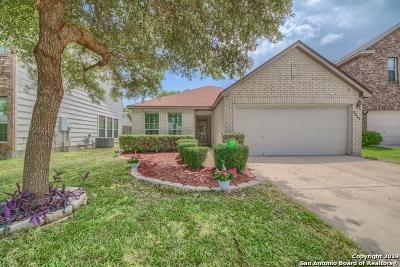 San Antonio Single Family Home New: 8806 Ansley Bend Dr