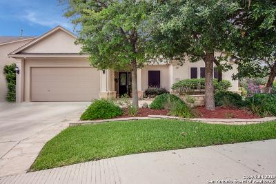 San Antonio Single Family Home New: 4214 Leona River