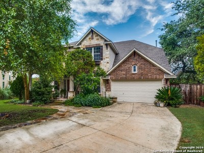 San Antonio Single Family Home For Sale: 24803 White Creek