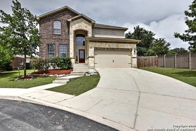 San Antonio Single Family Home New: 25602 Bottle Brush