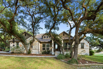 New Braunfels Single Family Home For Sale: 206 Gruene Haven