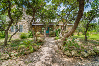 San Antonio Single Family Home Active Option: 254 County Road 385