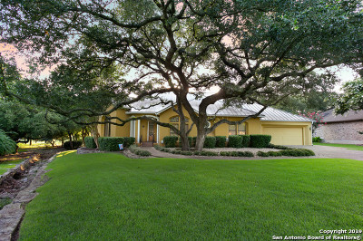 Fair Oaks Ranch Single Family Home For Sale: 29738 Fairway Vista Dr