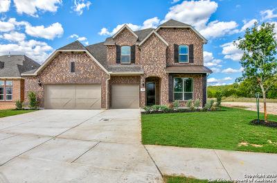 Boerne Single Family Home Price Change: 99 Destiny Drive