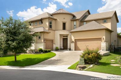 San Antonio Single Family Home For Sale: 2307 Dunmore Hill
