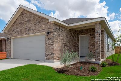 Seguin Single Family Home For Sale: 2437 Ranger Pass