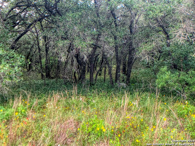 Wilson County Residential Lots & Land Active Option: 824 Killarney Rd