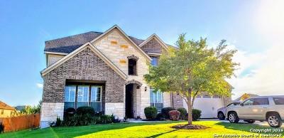Alamo Ranch Single Family Home For Sale: 12210 Maurer Ranch