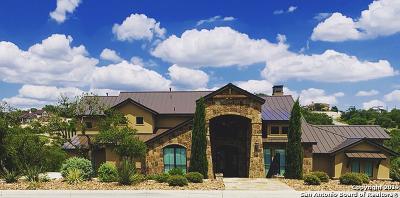 San Antonio Single Family Home For Sale: 9929 Autumn Canyon