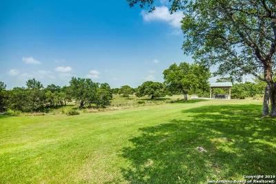 Boerne Farm & Ranch For Sale: 28453 Bridle Path