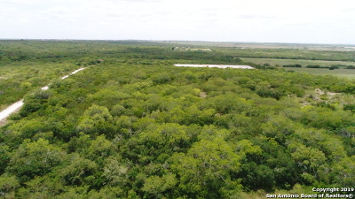 Kenedy TX Farm & Ranch For Sale: $430,000