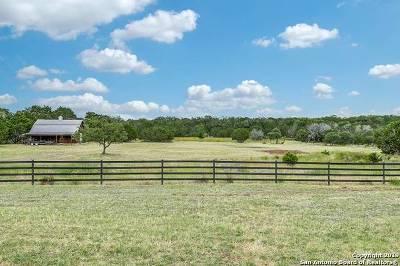Boerne Farm & Ranch For Sale: 317 Zoeller Ln