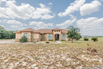 Floresville TX Single Family Home For Sale: $389,333