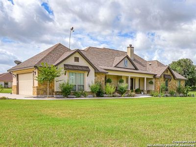 Floresville Single Family Home For Sale: 260 Abrego Lake Dr