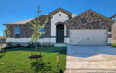 Guadalupe County Single Family Home For Sale: 117 Boulder View