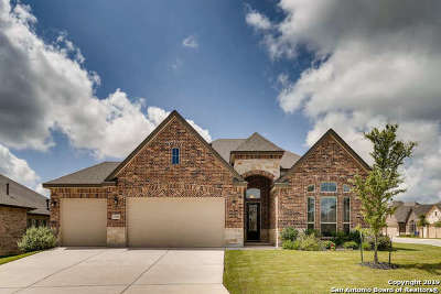 Boerne Single Family Home For Sale: 27015 Catmint Cove