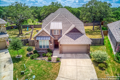 San Antonio Single Family Home For Sale: 25603 Water St