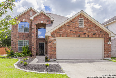 Cibolo Single Family Home For Sale: 137 Niemietz Cove