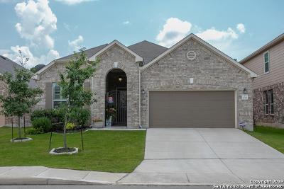 Single Family Home For Sale: 20111 Hillbrook Park