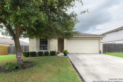 New Braunfels Single Family Home For Sale: 314 Ibis Falls Dr