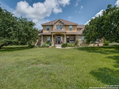 Castroville Single Family Home For Sale: 253 Private Road 4733
