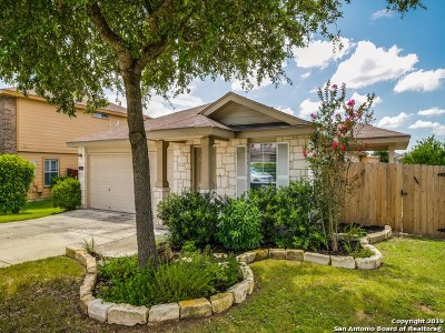 New Braunfels Single Family Home For Sale: 3321 Bluebird Ridge