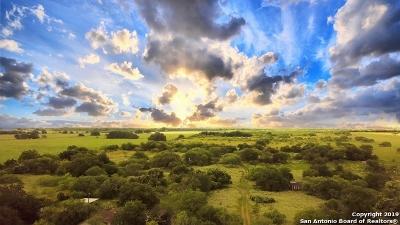 Wilson County Farm & Ranch New: 2376 Fm 1107
