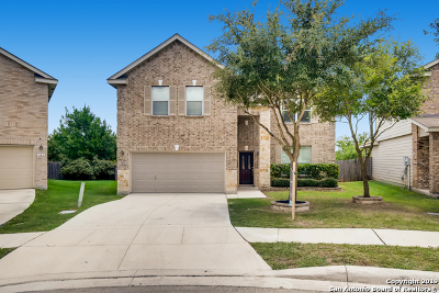 Cibolo Single Family Home New: 141 Vista Del Rey