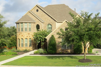 San Antonio Single Family Home For Sale: 26003 Turquoise Sky