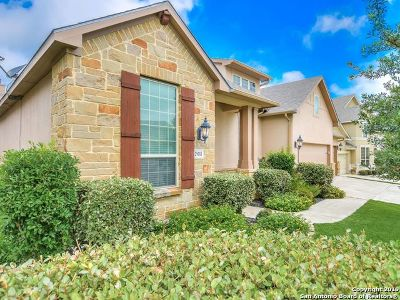Boerne Single Family Home For Sale: 29111 Porch Swing