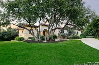 Fair Oaks Ranch Single Family Home New: 42 Terrace Point