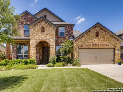 Boerne Single Family Home For Sale: 27011 Sable Run