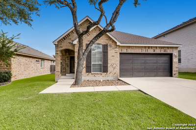Stone Oak Single Family Home Active Option: 23227 Cardigan Chase